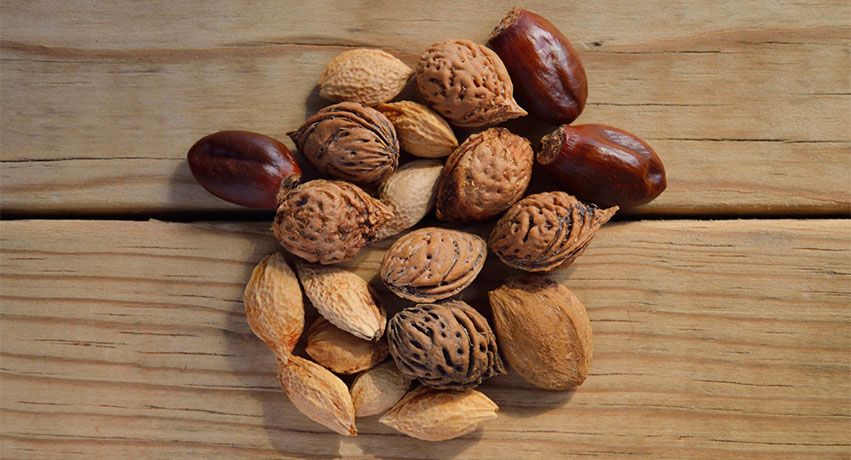 nuts - 8 Power Foods For Your Liver